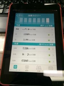 kenko (3).jpg